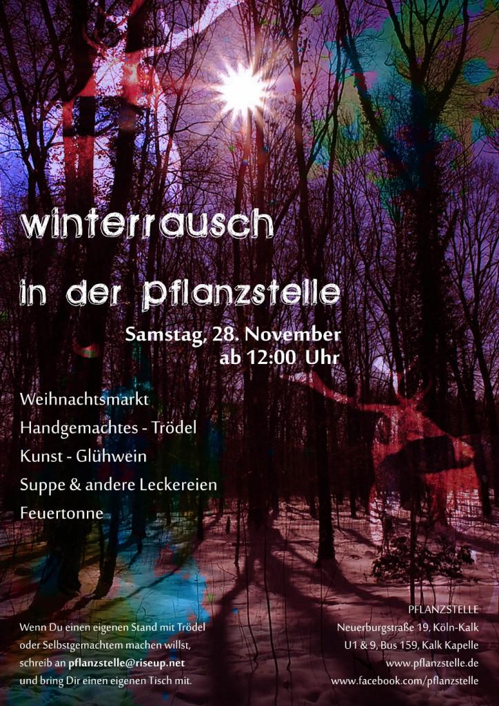 winterrauschklein_2